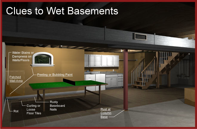 photo of clues to wet basement